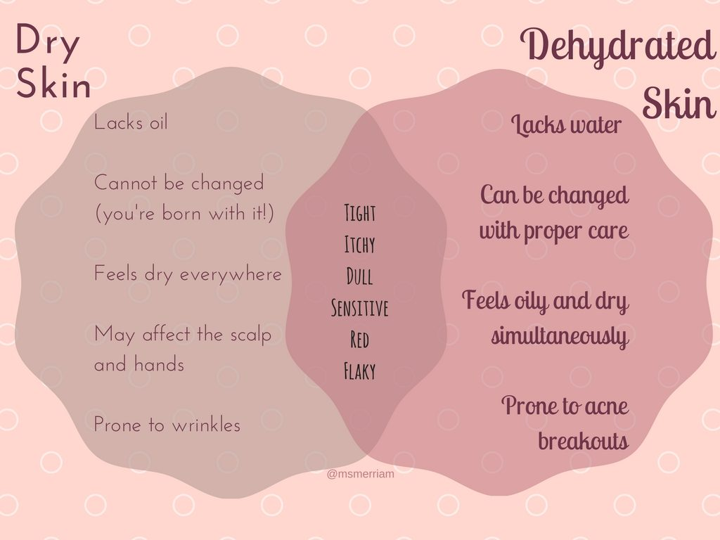 dry vs dehydrated skin infographic